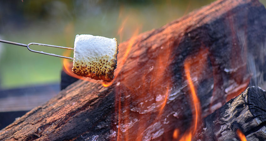 Toasting Marshmallows on a Campfire! | Glamping Scotland