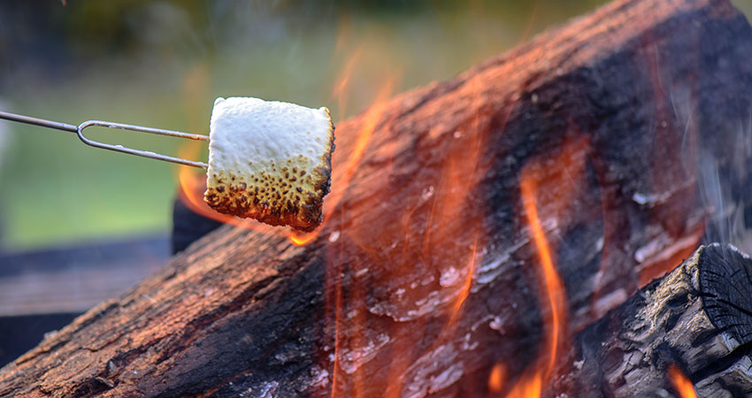 Toasting Marshmallows on a Campfire | Glamping in Scotland | Near Glenagles