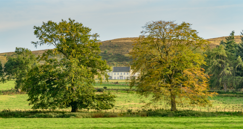 Autumn at Alexander House | Holiday House near Gleneagles Perthshire