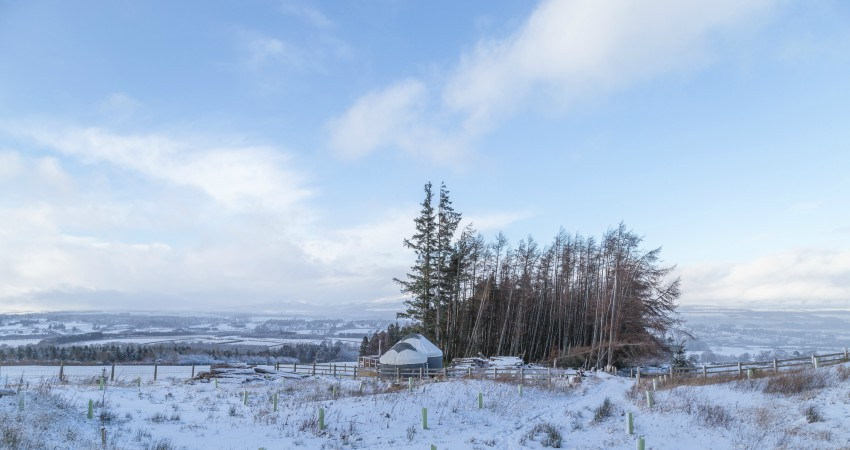 Yurt Heather | Wood-fired Hot Tub | Glamping Yurts Scotland Perthshire