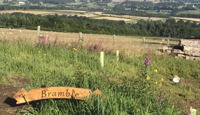Yurt Bramble Views - Glamping in Scotland