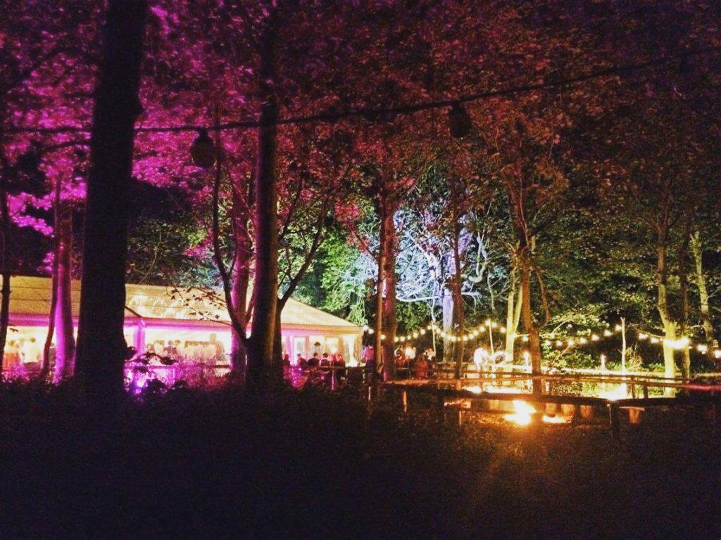 Wedding Lighting Ideas | Outdoor Festoon Light Walkway
